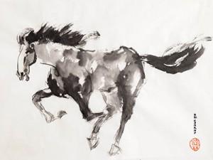 Eileen Connor - Running Free