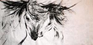 Simona Nemcova - Horse Touch
